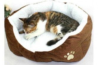 [Camper Pet Bed @ 75% Savings!] B$11.9 instead of B$48 for a unit of Happy Camper Pet Bed. (choose from 3 colors) Redemption at SD HQ, Anggerek Desa